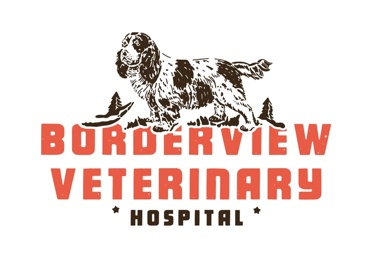 Borderview Veterinary